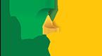 NexPro Logo